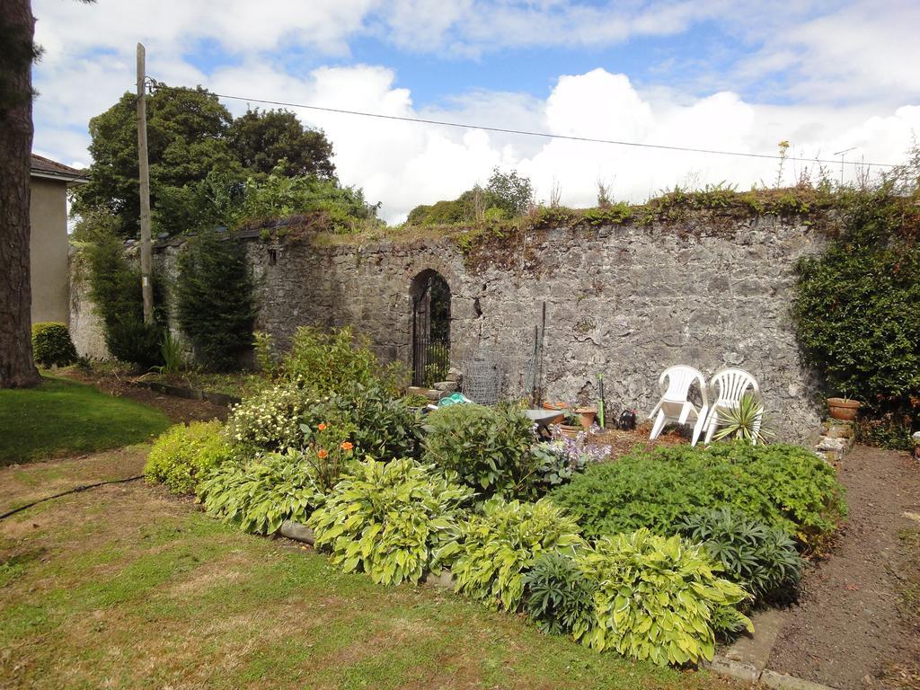 Glendine House Kilkenny City B&B Garden