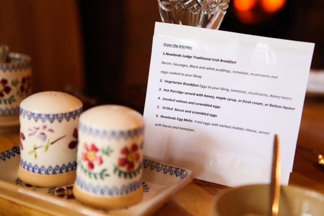 Newlands Lodge B and B Kilkenny Breakfast