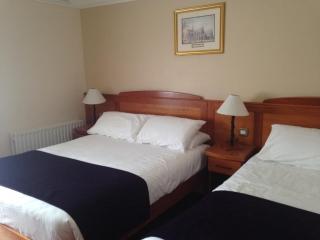 Kilford Arms Kilkenny Hotel Twin Bedroom