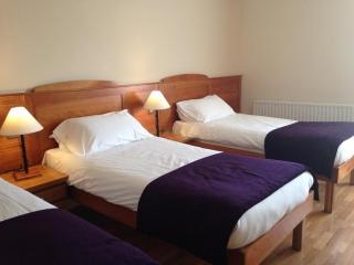 Kilford Arms Kilkenny Hotel Bedroom 2
